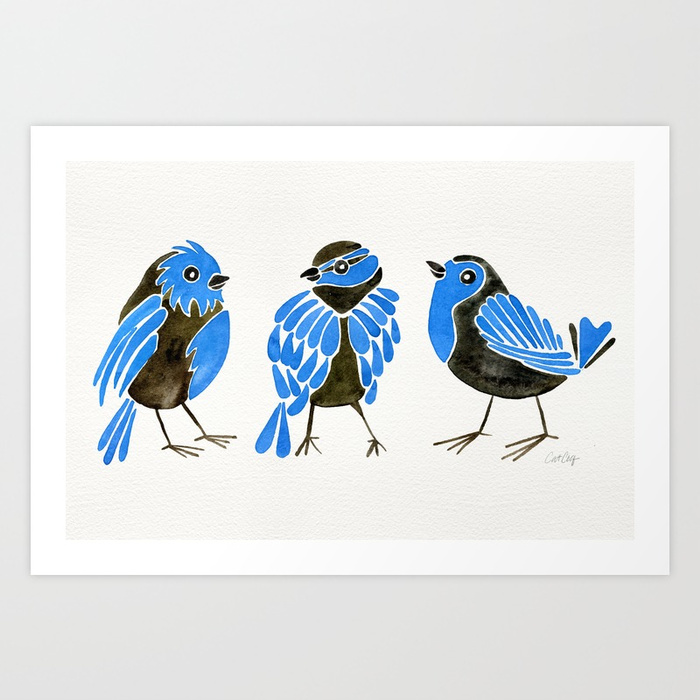 blue-finches-z50-prints.jpg