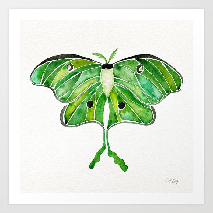 luna-moth-p7u-prints.jpg