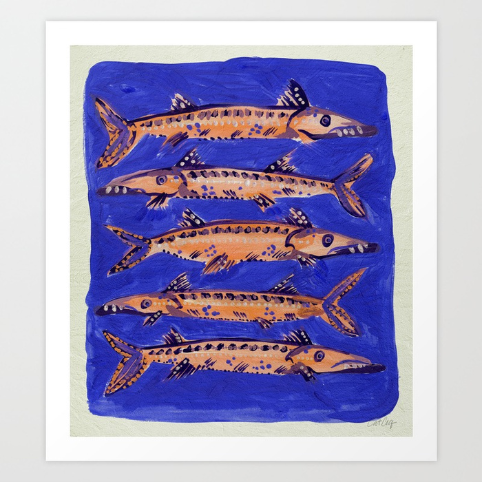 barracuda-on-blue-prints.jpg