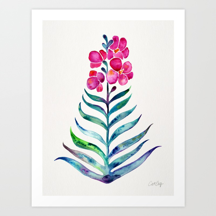 blooming-orchid-fuchsia-indigo-palette-prints.jpg