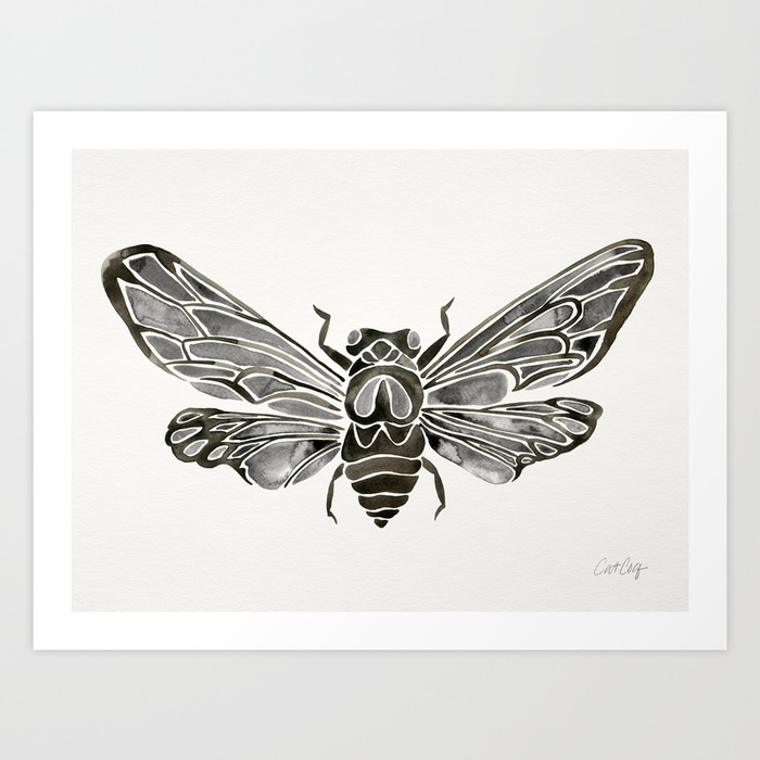 summer-cicada-black-palette-prints.jpg