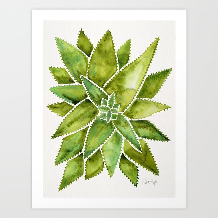 aloe-vera-green-palette-prints.jpg