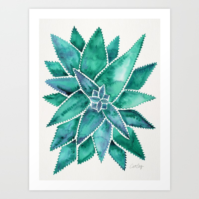 aloe-vera-turquoise-palette-prints.jpg