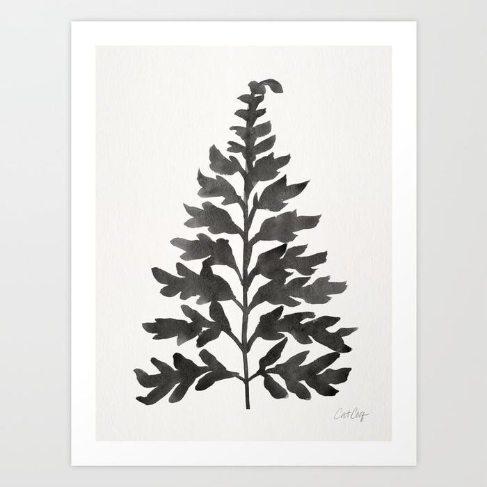 black-fern172796-prints.jpg