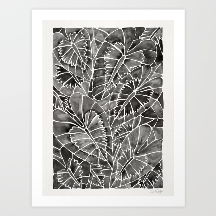 schismatoglottis-calyptrata-black-palette-prints.jpg