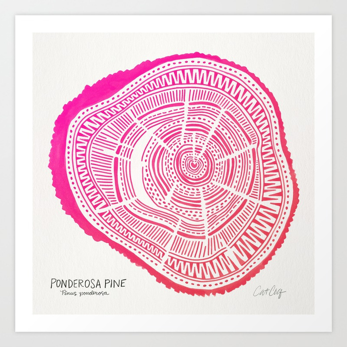 ponderosa-pine-pink-ombre-palette-prints.jpg