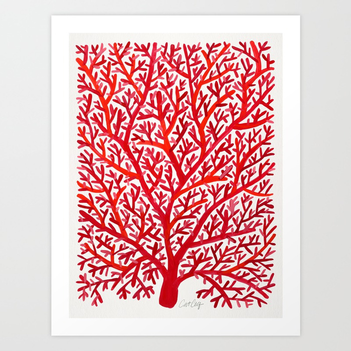 red-fan-coral-prints.jpg