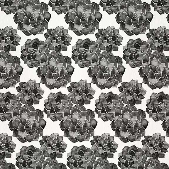 Black-RosetteSucculents-pattern.jpg