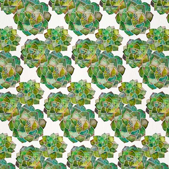 Green-RosetteSucculents-pattern.jpg