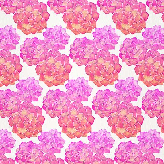 Pink-RosetteSucculents-pattern.jpg