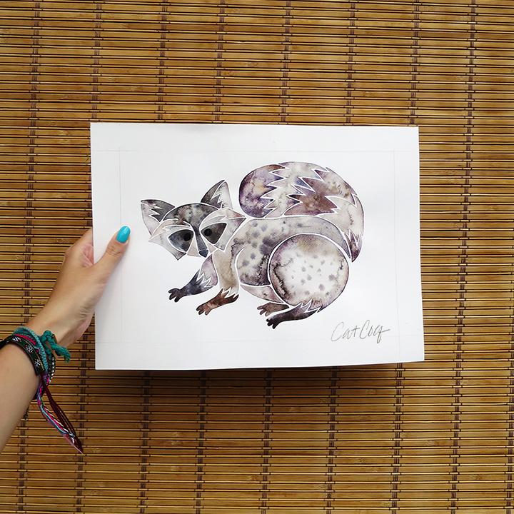Raccoon-web.jpg