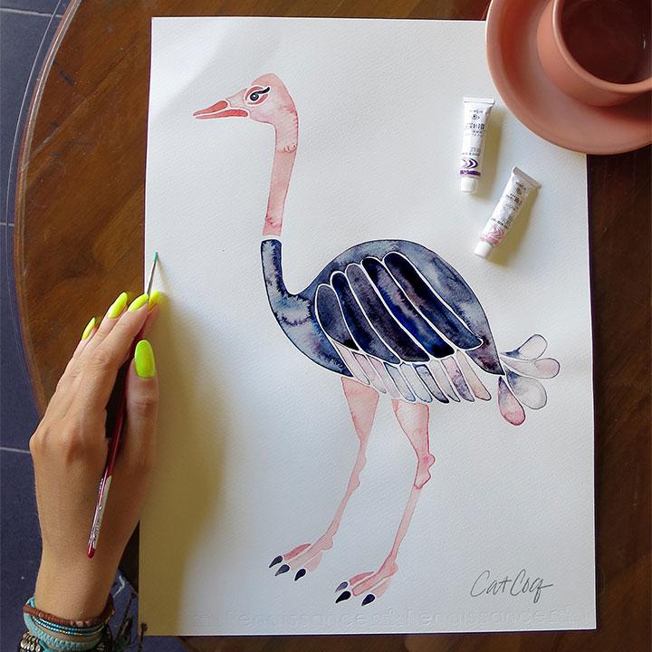 Ostrichsquare.jpg