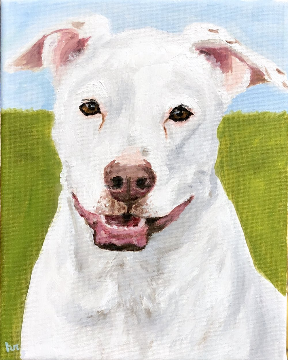 White Pit Mix