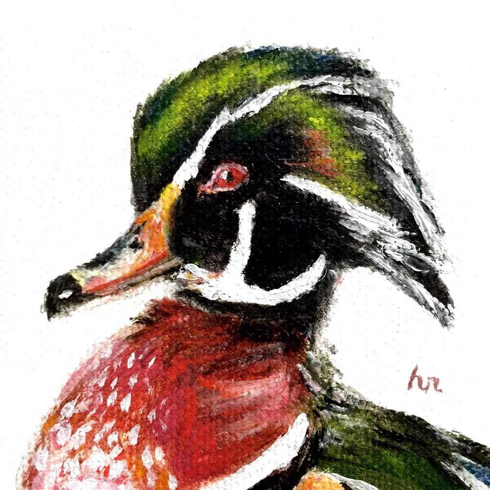 Wood Duck Mini