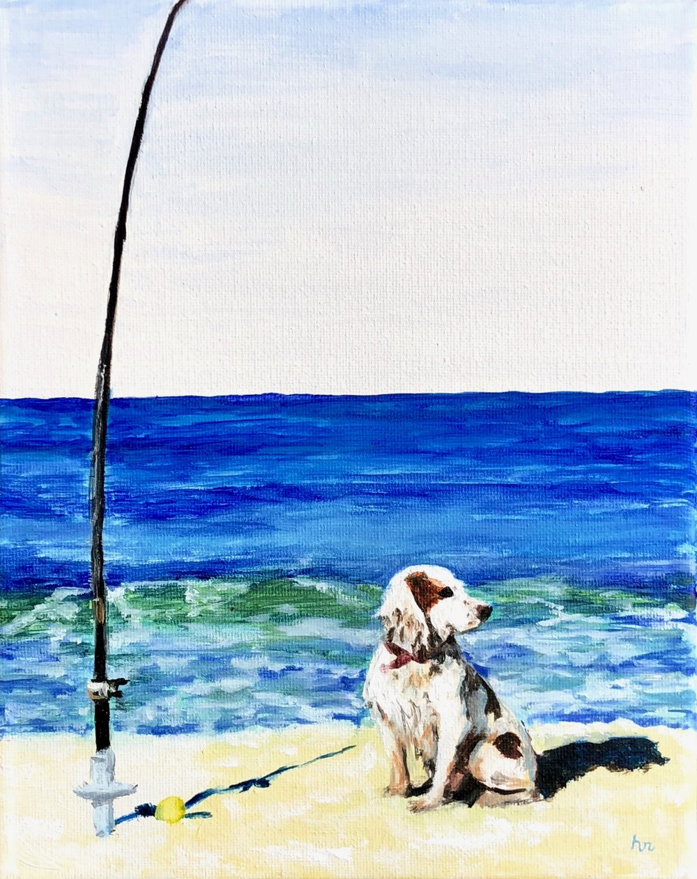 Fishing Springer
