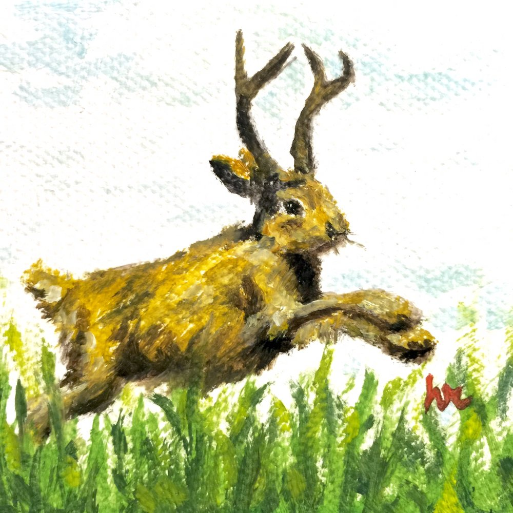 Jumping Jackalope Mini