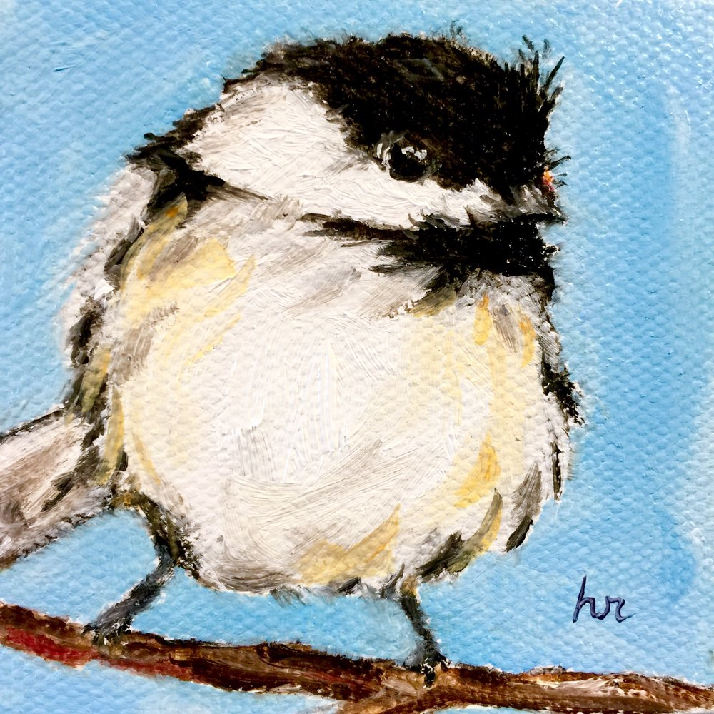 Chickadee Mini (1 of 2)