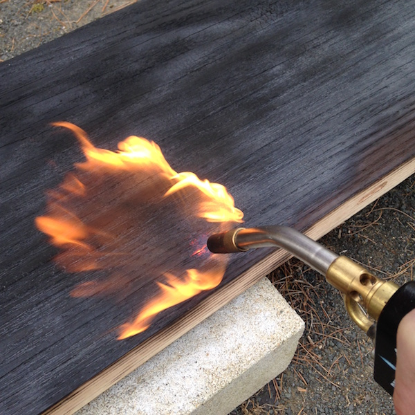 Scorched_wood_6.JPG