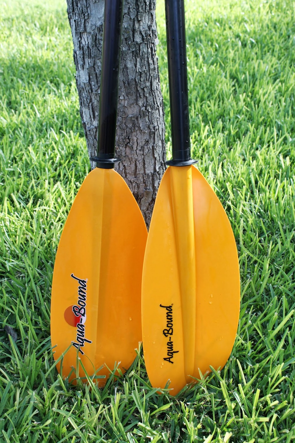 Aquabound Paddlesports Manta Ray Aluminum