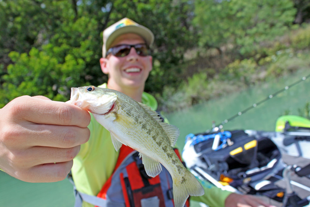 Clint Taylor Small Bass