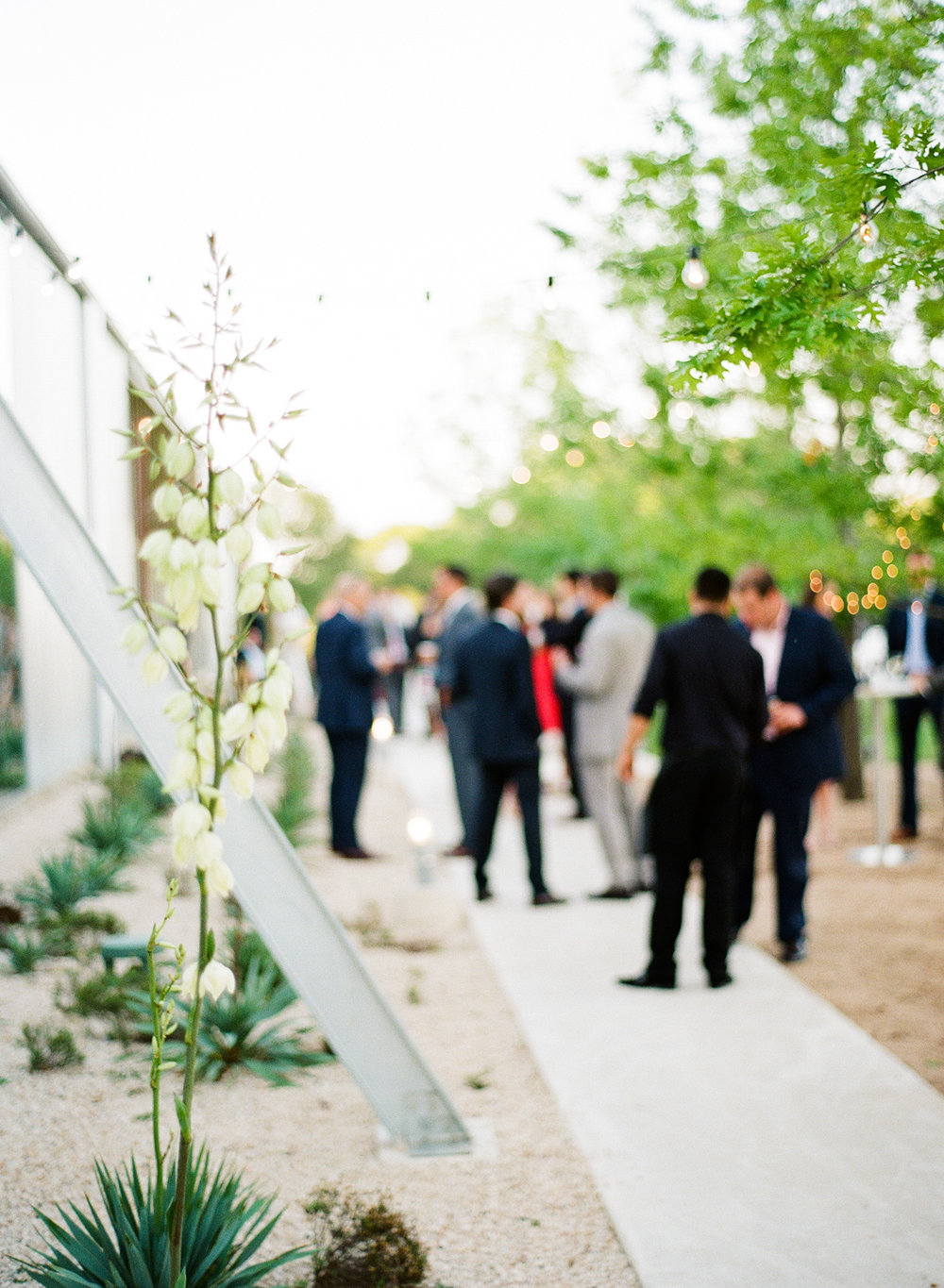 PROSPECT_HOUSE_WEDDING_AUSTIN_TX_BY_MATTHEW_MOORE_PHOTOGRAPHY_00573.jpg