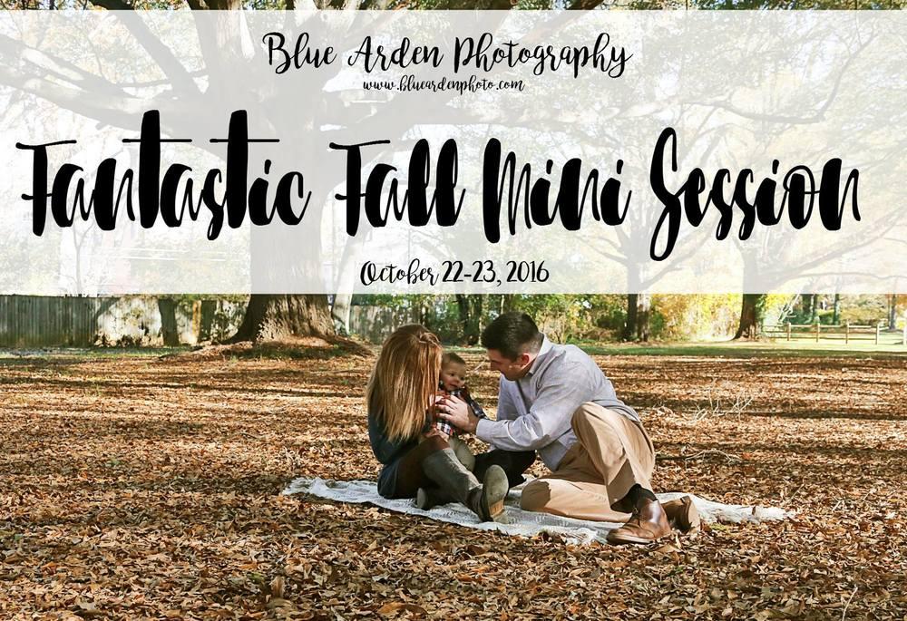 Fantastic Fall Mini Session.jpg