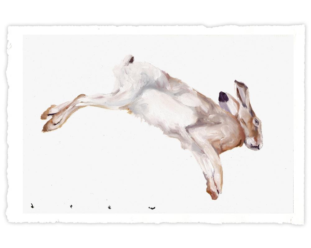 'Dead Rabbit' (2017)