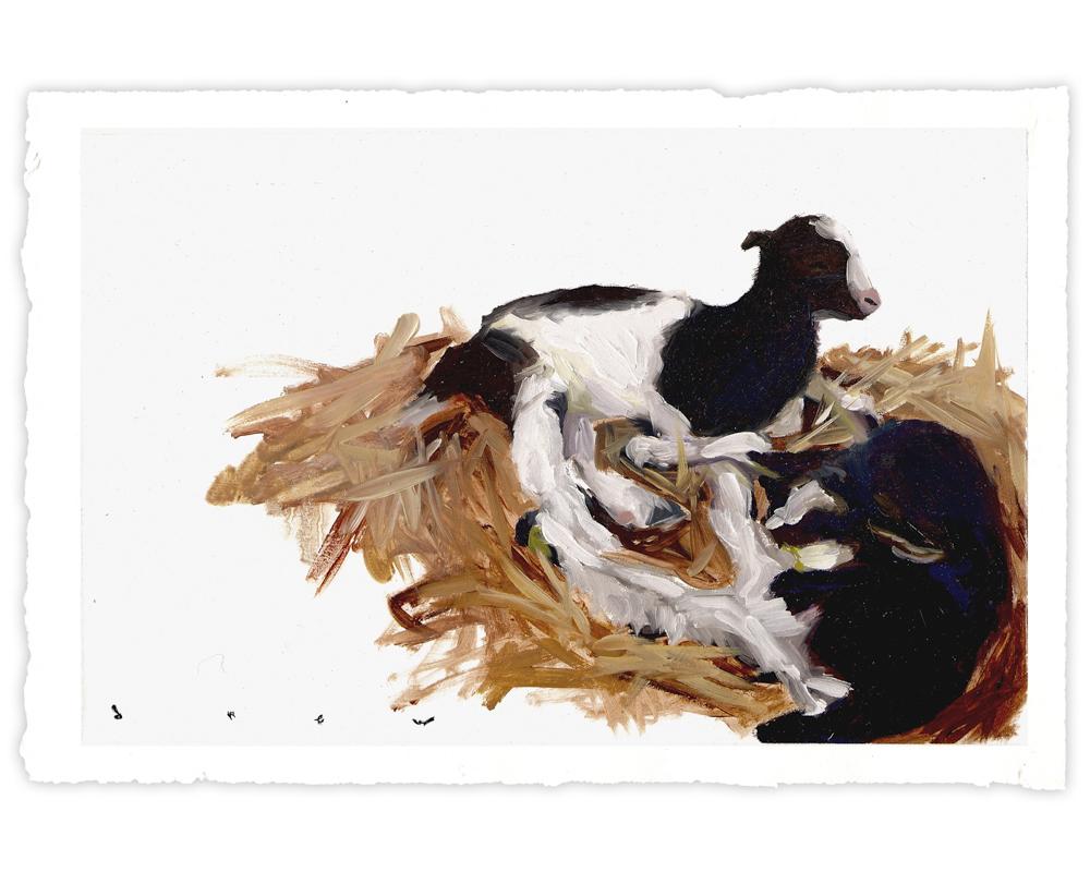 'Goats' (2017)