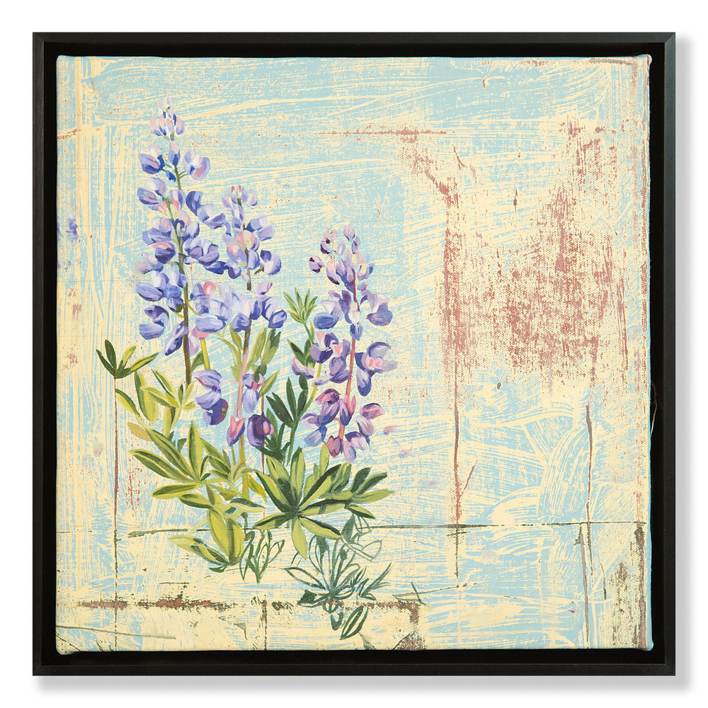 Mary Iverson - Alpine Lupine (2018)