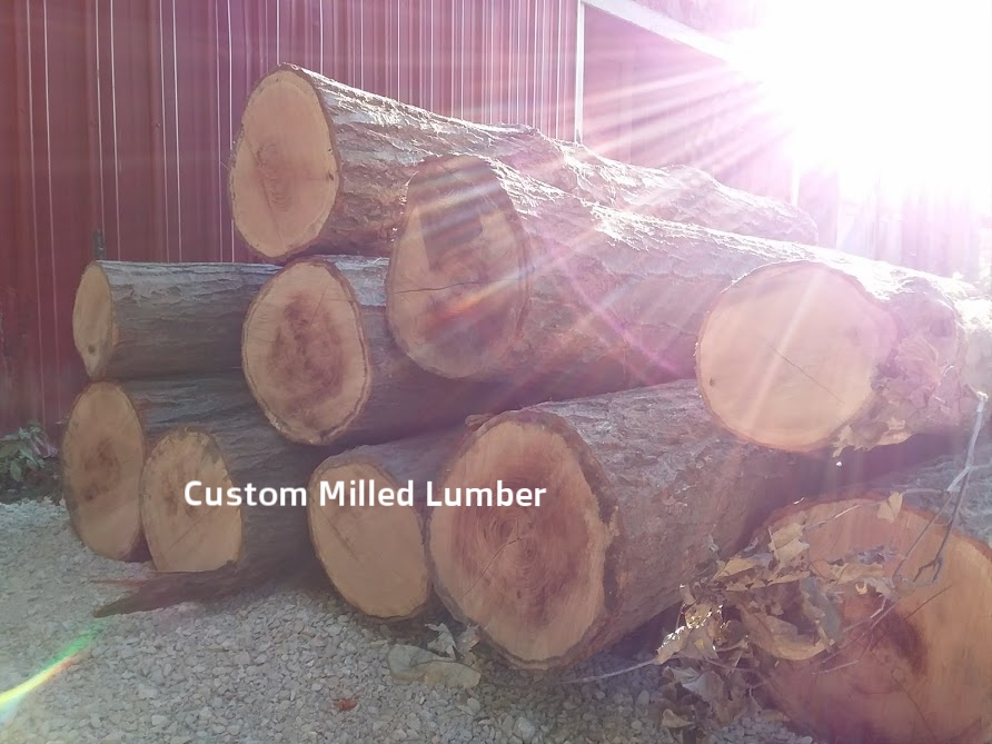 Sawmill logs.jpg