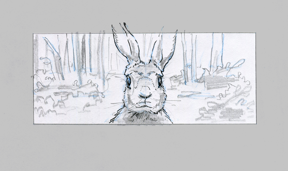 Narrative pencil board  in long aspect ratio / frame 1/2.