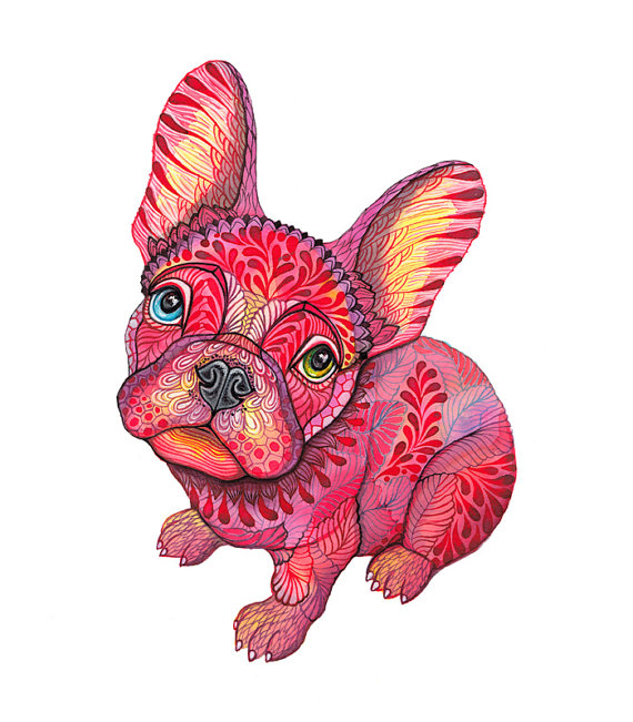 Raspberry Frenchie Print