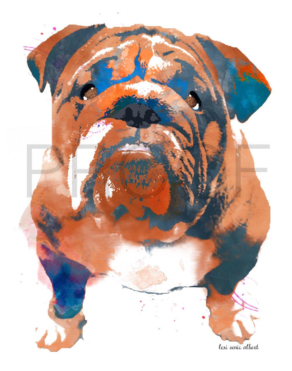 Ned the Bulldog