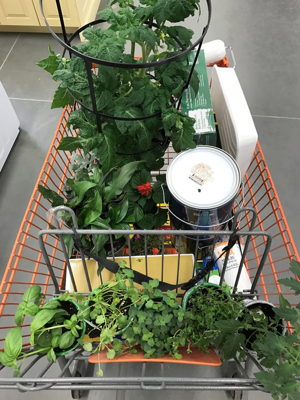 when you come in for paint and leave with the entire garden center
