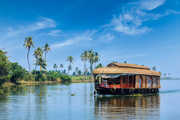 Kerala-backwaters.-Kerala-India.jpg