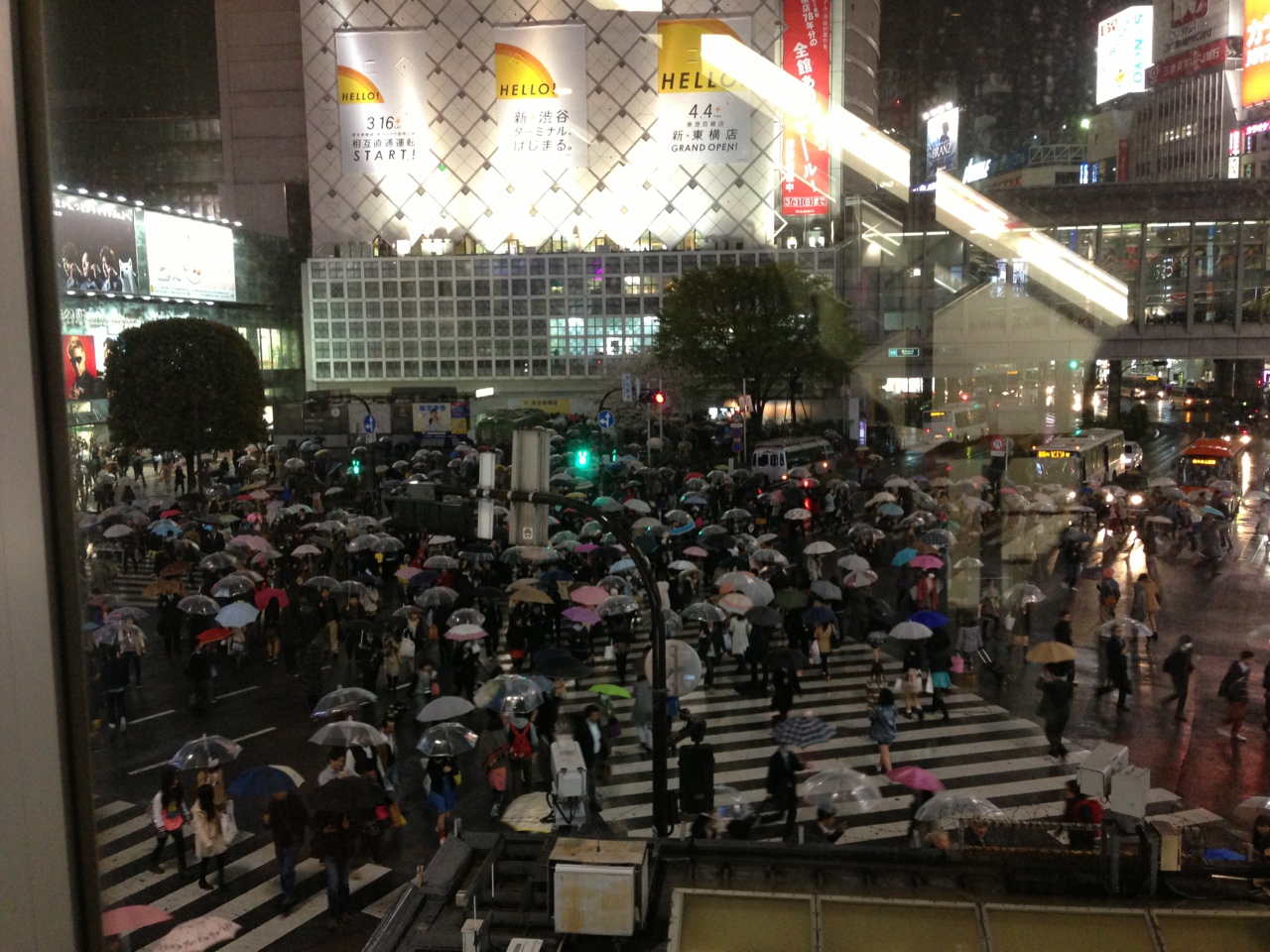 Shibuya crossing on a rainy day.