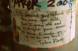 easyxluckyxfree9608: Sylvia Plath <3