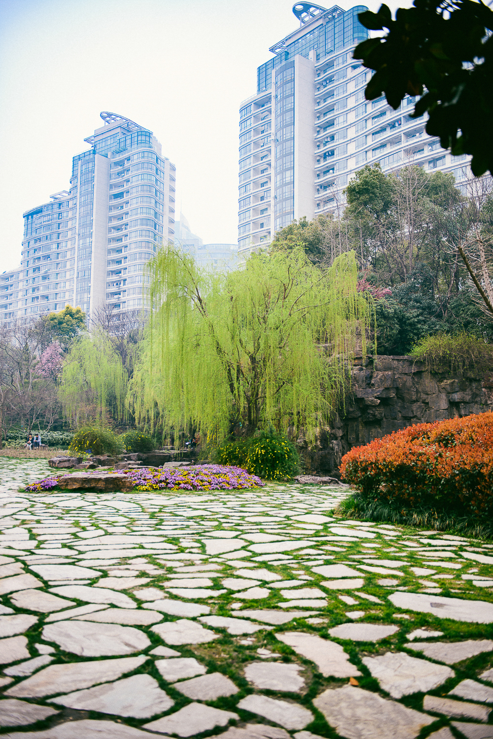 20160313_lva_china-1093i-2.jpg