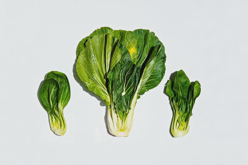 Bok Choy | Lauren V. Allen | Food & Travel Photographer | Raleigh-Durham, N.C.