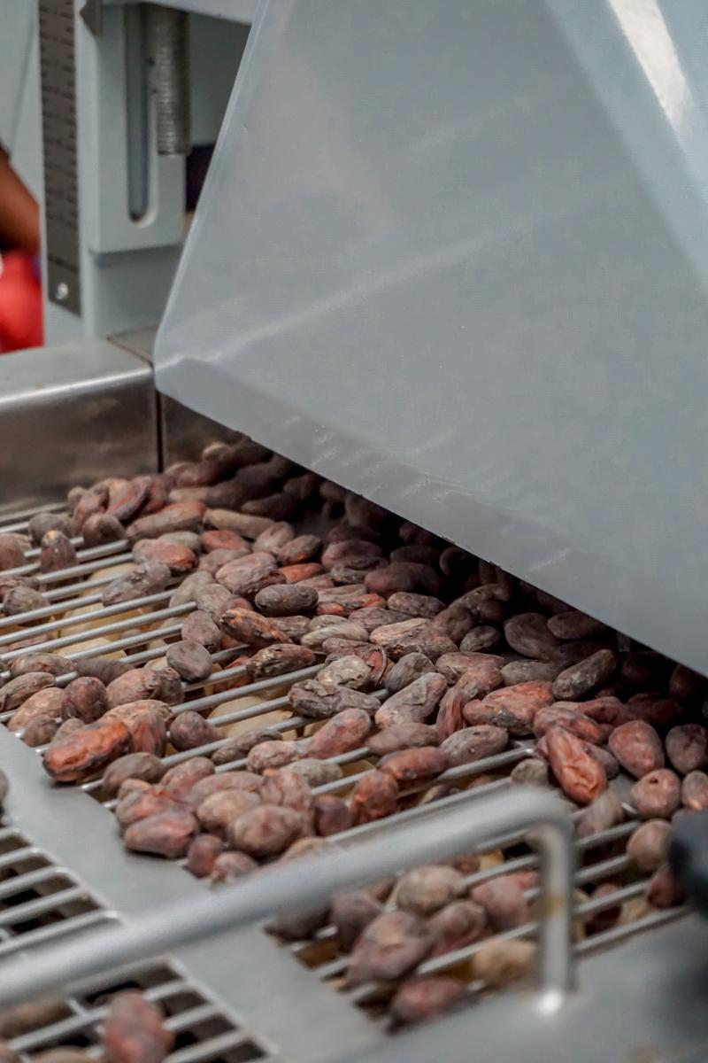 chocolate xol honduras jose vargas blog copan