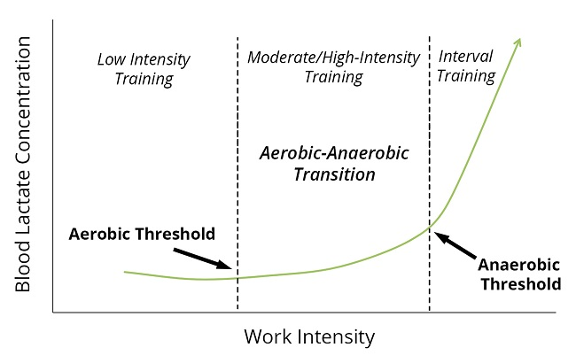 Work Intensity is directly reflected by Heart rate & to a degree Pace/Speed. Training at lower intensity, and lower speeds around your aerobic threshold will ensure you develop this system effectively.