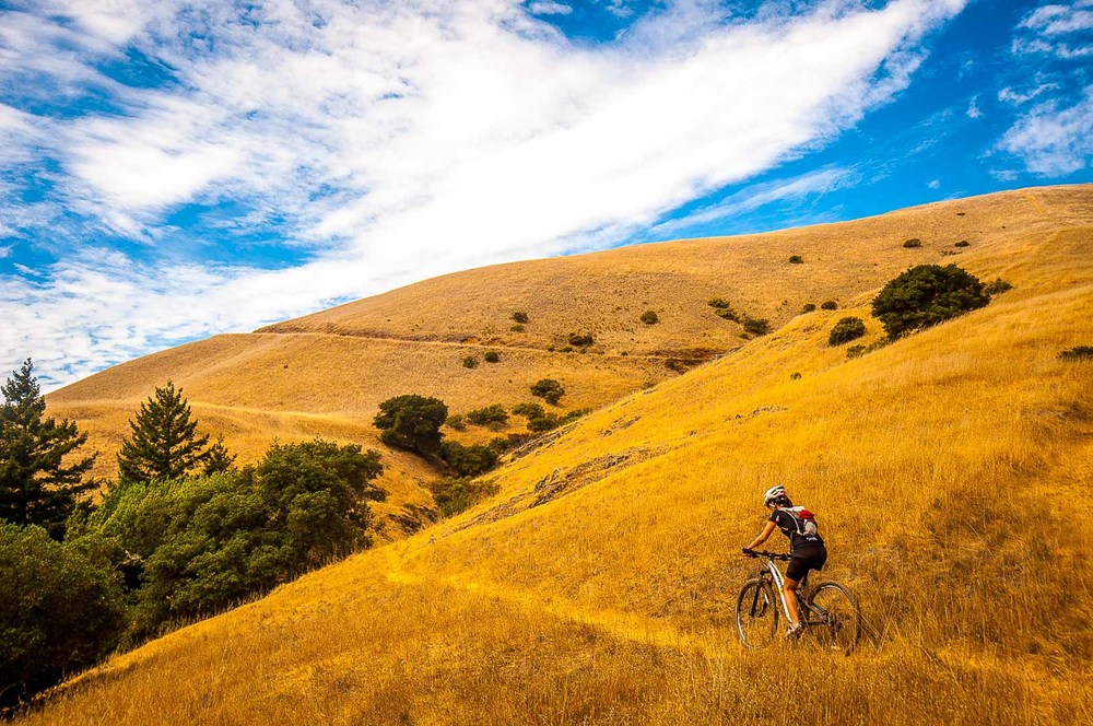 Mountain Biking Marin guided ride tailored to your skill level