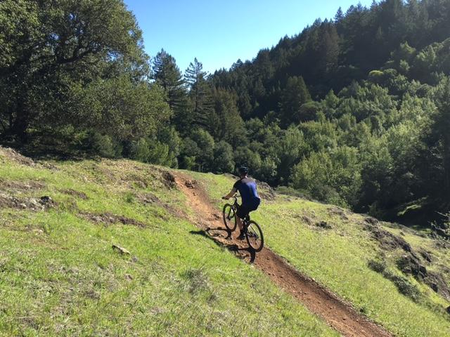 Marin Trail.JPG