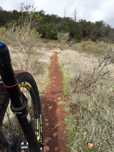Sonoma Trail.JPG
