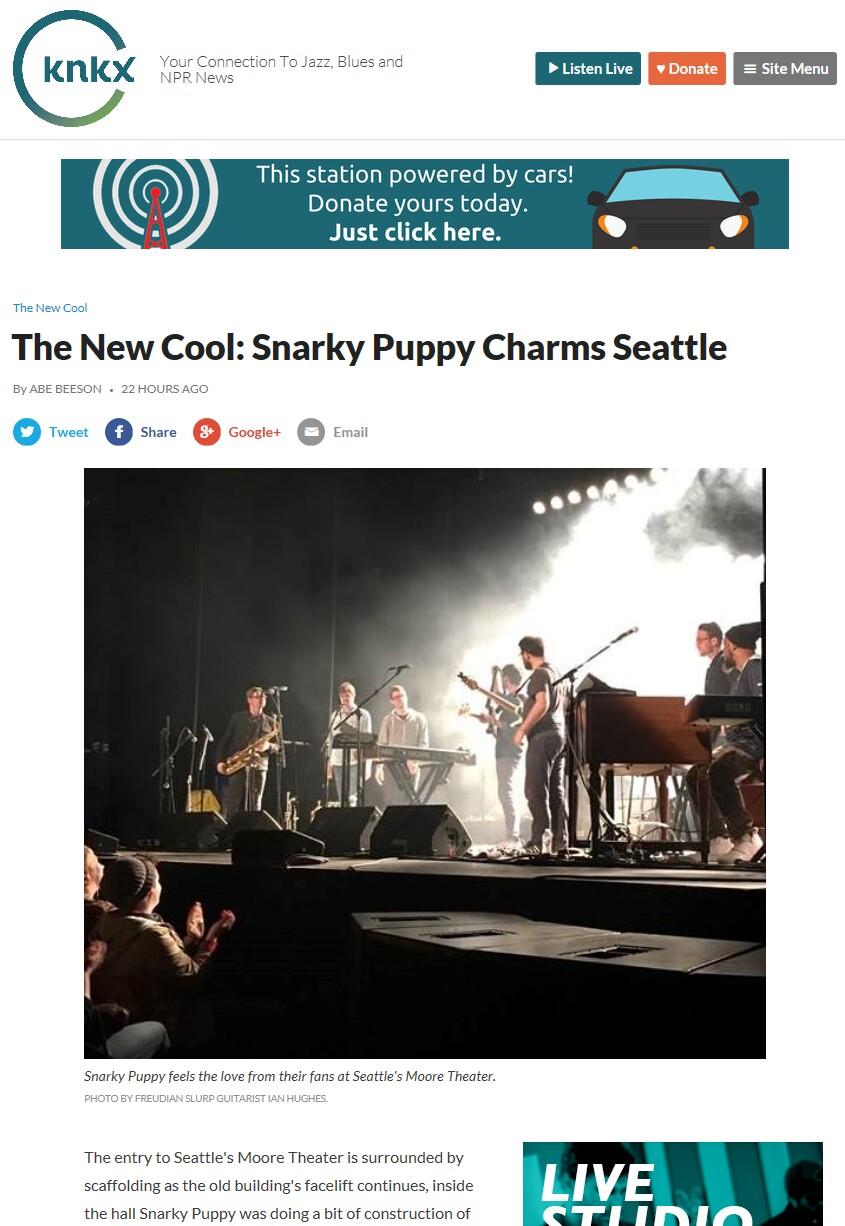 KNKX SNarky Puppy.jpg