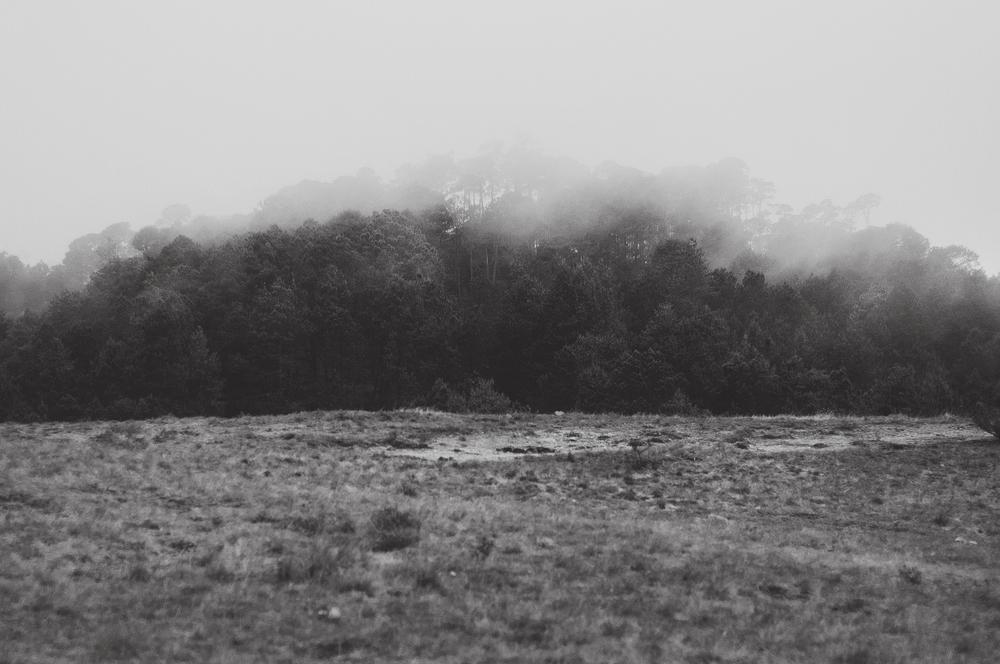 Rodi+Amelie Stone Valley Engagement (20).jpg