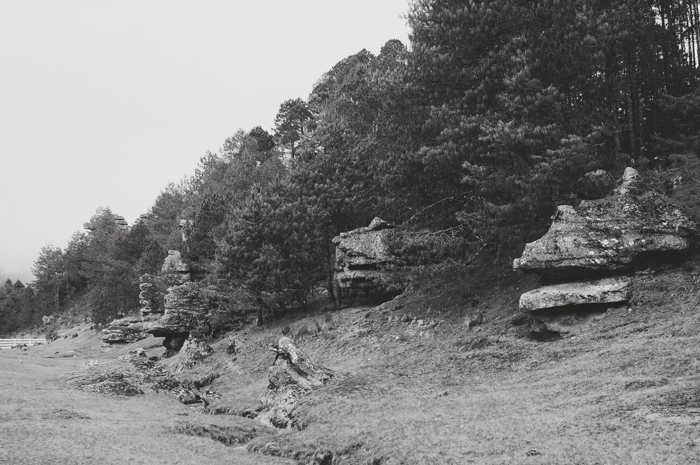 Rodi+Amelie Stone Valley Engagement (46).jpg