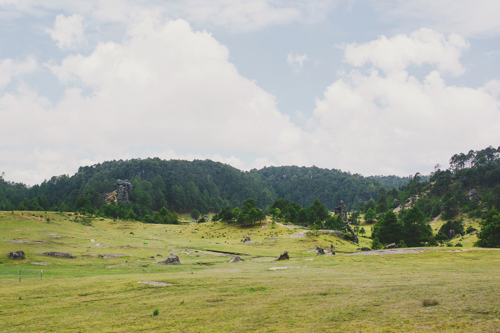 Rodi+Amelie Stone Valley Engagement (16).jpg
