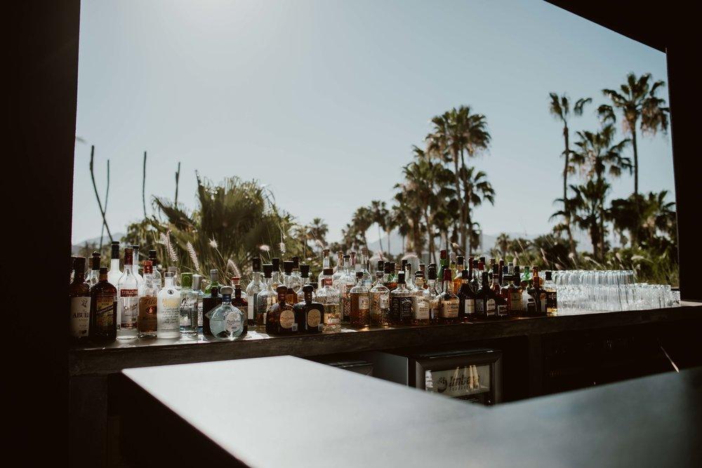 Dalton Gin Bar-San Jose Del Cabo-2.jpg