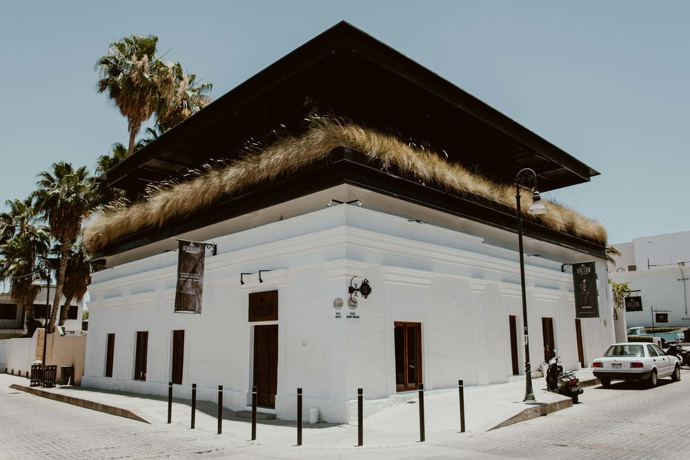 La Revolucion-San Jose Del Cabo-1.jpg